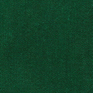 Image of Kelly Green Tackle Twill Color (Thumbnail)