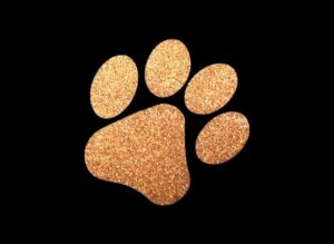 Image of Copper Paw PreCut HTV Glitter Design