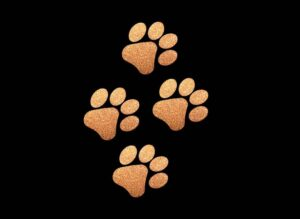 Image of Copper Paws PreCut HTV Glitter Design