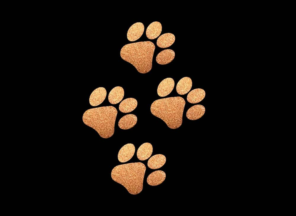 Image of Copper Paws HTV Glitter Design