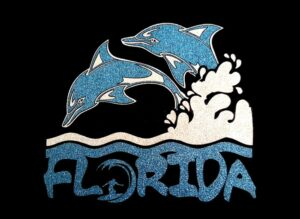 Image of Florida PreCut HTV Glitter Design