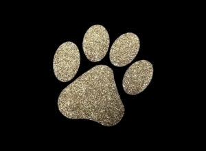 Image of Gold Paw PreCut HTV Glitter Design