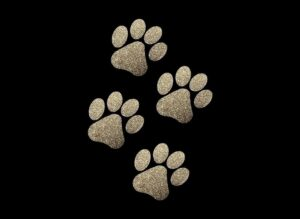 Image of Gold Paws PreCut HTV Glitter Design