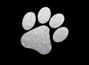 Image of Silver Paw PreCut HTV Glitter Design